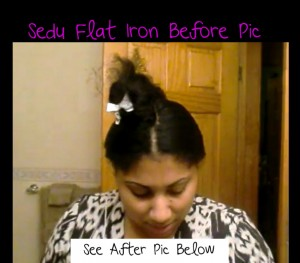 Sedu Flat Iron Review Before Pic